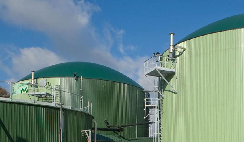 Biogas-instalazioagatik Ultzamako Udalari erreklamatutako kalte-ordaina, baliogabetuta